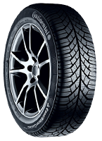 Continental Winter TS830 Tires