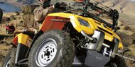 Features to Expect in  ATV Winches