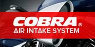 Cobra Air Intake