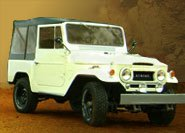 Toyota Land Cruiser Tops